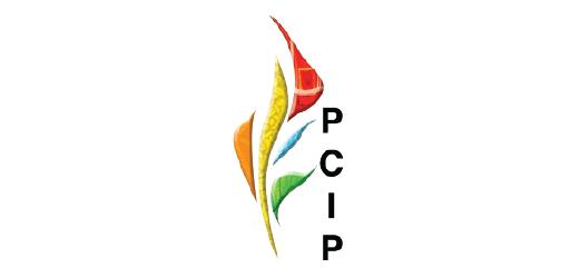 PROYECTO SALVAGUARDA DEL PATRIMONIO CULTURAL INMATERIAL DE PANAMÁ