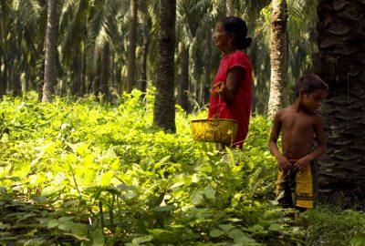 Foto de la Propuesta documental 'María Corozo' Colombia